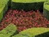 jardin ‡ la franÁaise